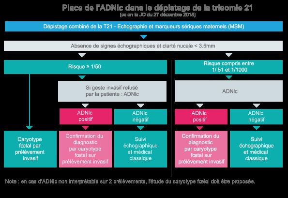Schema 1 Diag Avec DPNI FRANCE HP (janv 2019)